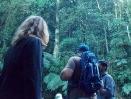 Serra do Guararú-1